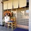 【オススメ5店】鈴鹿(三重)にある創作料理が人気のお店