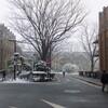 大雪再び!