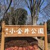 小金井公園に行ってみた。浴恩館公園、玉川上水、江戸東京たてもの園など。(小金井市関野町)