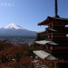 <富士五湖 富士吉田>新倉山浅間公園と富士ビジターセンターの紅葉を見てきました。