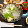 一年ぶりの湘南生しらす! 葉山でしらす丼とイサキの煮付けを食べてきた