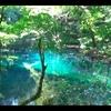 【東北&北海道(29)】世界遺産にも登録されている白神山地の十二湖を観光