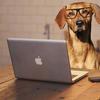 Excelの起動が遅い原因は?試してみる 4つの対処法