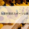 【ポケモンの巣】「太宰府歴史スポーツ公園」の時給調査