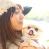 犬の外耳炎とは?!原因と症状・効果的な治療法を解説します。
