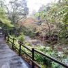 【オトナの冒険譚】都心から1時間弱、大自然に囲まれた渓流BBQが天国である話。