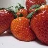 【写真複製・写真修復の専門店】イチゴの画像 綺麗な赤色に