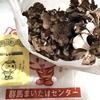 2019年群馬の人気おみやげランキングTOP10~3月5日付