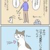 私ネコ好きでございます。実家のにゃんこを紹介します!