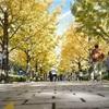 【写真で振り返る】秋を探しに裏磐梯をツーリングした話