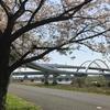 地図子、たまに荒川を行く -西新井橋(尾竹橋)から江北橋まで-