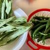 南蛮味噌と愉快な野菜たち🥒🎵