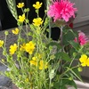 ほんの少し花のある生活…  心がちょっぴり豊かに…