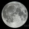 満月満足(月齢15.005)