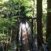 岐阜県 阿寺渓谷で自然を満喫しました