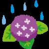 紫陽花の季節にアンティーク紫陽花も