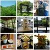 【高知市】山奥の緑あふれるレストラン『オーベルジュ土佐山』