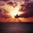 【名著】神の存在意義を問う衝撃作!遠藤周作『沈黙』のレビュー
