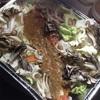 【CAMPレシピ】鮭のちゃんちゃん焼き