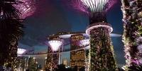 ANA SFC修行3日目 シンガポール~修行の合間に観光も楽しもう!後編・おしゃれスポットマリーナ地区を巡るの巻~