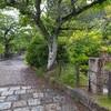 雨の京都散歩