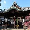 日本最古の天満宮「菅原天満宮」で、一足早い春の梅の芳香を