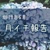 新規開拓気分の6月【月イチ報告】