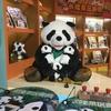 パンダに会いたい!!④ ついにたどり着いたぱんだ、PND、大熊猫、パンダ(後編)