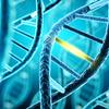 遺伝子の量子力学的モデル