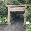 屋久島 初日は島を一周ドライブ カジュマル公園~屋久島灯台~大川の滝