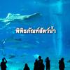 タイ語における文語と口語と外来語