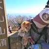 ワクワク☆大山登山 with 豆柴そら<前編>