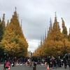 今日の神宮外苑のいちょう並木