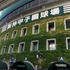 【土日・祝日に行きたい!】阪神甲子園球場のチケットを買う9つの方法