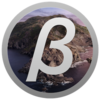 macOS Catalina 10.15.1 Beta 1(19B68f)
