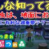 【あつ森】みんな知ってる?虫や魚は、地面における!意外と知っているようで知らない超重要テクニック!Animal Crossing New Horizons【あつまれ どうぶつの森/ニンテンドースイッチ】