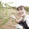 【家庭菜園】オクラを収穫しました