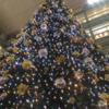 相模大野駅ビル クリスマスツリー点灯!!