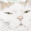【イラスト】猫:むぎちゃん【似顔絵】