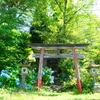 白馬【伝行山下堂】隠れた桜と紫陽花の名所☆