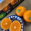 【コストコ】2021年購入すべきフルーツ5選 オアオレンジ レッドシードレスグレープ バナナ キウイ 後ひとつは?
