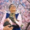 2.22公開映画「ねことじいちゃん」試写会で観て~猫だらけの島のほのぼの話