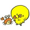 帰国 モントリオール→成田 直行便②