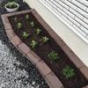【DIY】らくらくレンガセットを使って花壇作ってみた。