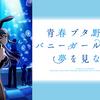 TVアニメ「青春ブタ野郎はバニーガール先輩の夢を見ない」の感想