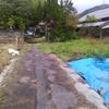 雨上がり、、、
