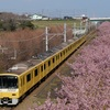 KEIKYU YELLOW HAPPY TRAIN × 河津桜