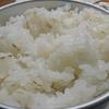 ガス火で炊きたての米が美味すぎて止められない