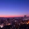 空から日本を見てみよう+   ー 東京タワーからスカイツリーへ ー