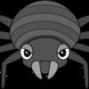 【恐怖】あなたの部屋の隅にいるよ、いつもいるよ、ヒメカツオブシムシが服を食べる!